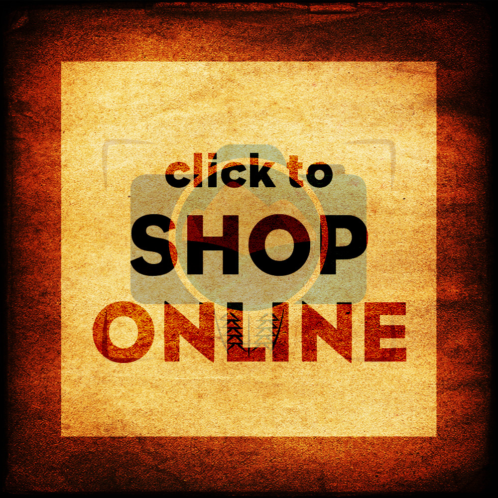 KP Marketing Online 2014 11 shoponline